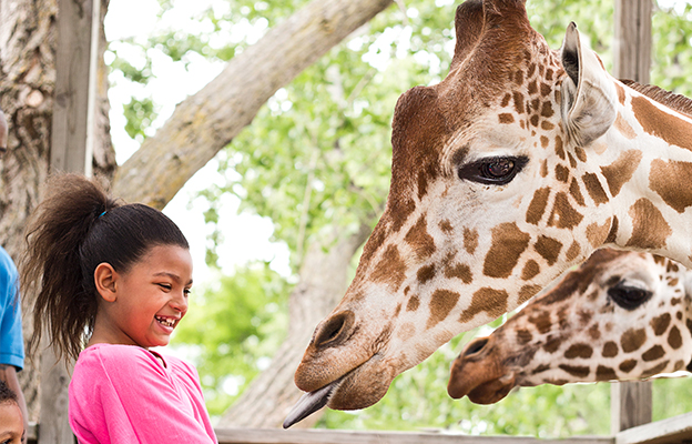 this gift guide recommends buy tickets for a orpheum theatre show in downtown wichita, kansas